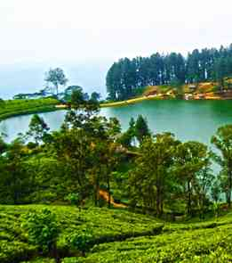 Kerala Special-Traveldilse.com